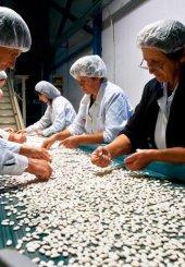Από Ιούνιο η υποβολή αιτήσεων για το νέο καθεστώς «Επιχειρηματικότητα Πολύ Μικρών και Μικρών Επιχειρήσεων»