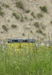 Πάνω από 80 μελισσοκομικές και περιβαλλοντικές οργανώσεις και επιστήμονες συμμάχησαν κατά των νεονικοτινοειδών