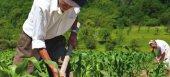 Πληρώθηκαν πρόωρες συντάξεις, αναδιάρθρωση αμπελώνων και προώθηση αγροτικών προϊόντων