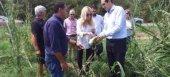 Στις πληγείσες αγροτικές περιοχές Ημαθίας και Χαλκιδικής η Φωτεινή Αραμπατζή