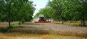 Πληρωμές δασώσεων και αγροπεριβαλλοντικών