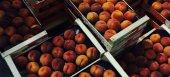 Καταβάλλεται τις επόμενες μέρες στην Ο.Π. Φλαμουριάς η ενίσχυση για την επισιτιστική βοήθεια στα ροδάκινα