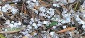 Άμεση εκτίμηση ζημιών από τον ΕΛΓΑ ζητά το ΚΚΕ για την Αιτωλοακαρνανία