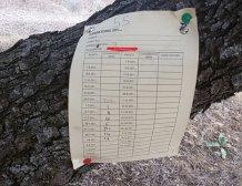 Καταγγελία για παρατυπίες στον έλεγχο του πληθυσμού του δάκου στο Αρκαλοχώρι