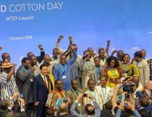 Καθιερώνεται από τον ΠΟΕ η 7η Οκτωβρίου ως η Παγκόσμια Μέρα Βάμβακος