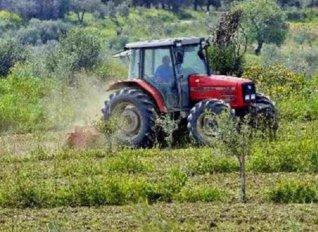 Συγκροτείται επενδυτική επιτροπή για το Ταμείο Εγγυήσεων Αγροτικής Ανάπτυξης