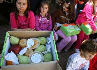 Ξεκίνησε η δωρεάν διανομή φρούτων, λαχανικών και γάλακτος σε σχολεία