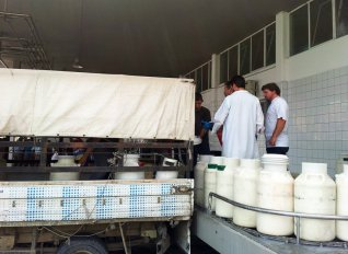 Προκαταβολές από τη Δωδώνη στους αιγοπροβατοτρόφους ύψους 4 εκατ. ευρώ