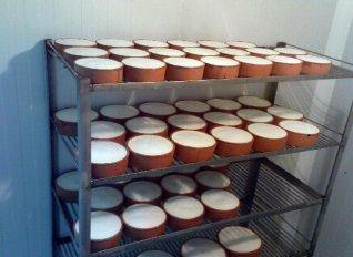 «Ελληνικό γιαούρτι» είναι μόνο το γιαούρτι που προέρχεται από την Ελλάδα απαντά ο Επίτροπος Andriukaitis στον Αποστόλου