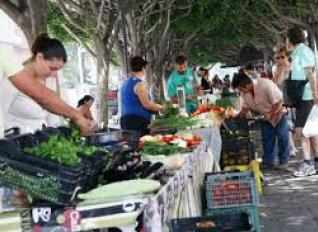 Πιέσεις να μην λειτουργήσουν Λαϊκές Αγορές Βιοκαλλιεργητών κατήγγειλε ο Τσιρώνης