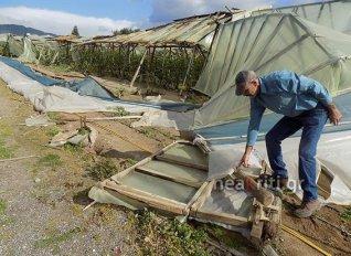 Δάκρυσε αγρότης στην Ιεράπετρα όταν ο κόπος του έγινε έρμαιο του αέρα