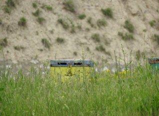 Ένοχος για κλοπή μελισσοσμηνών υπάλληλος της ΠΕ Λάρισας