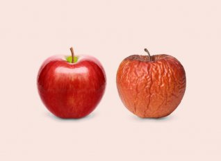 Κύκλωμα διακίνησης χυμών από σάπια μήλα εξαρθρώθηκε σε Ιταλία και Σερβία