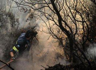 Ολοκληρώθηκε τα ξημερώματα η κατάσβεση των πυρκαγιών σε Κιλελέρ και Φάρσαλα