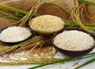 Καλλιεργητές ρυζιού έχασαν τη συνδεδεμένη ενίσχυση του 2015, γιατί οι ορυζόμυλοι δεν κατέθεσαν τα παραστατικά