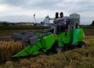 Σε τεχνική αδυναμία του ΟΠΕΚΕΠΕ οφείλεται η μη παράταση της προθεσμίας παράδοσης ρυζιού, σύμφωνα με το ΥΠΑΑΤ