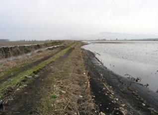 Να γίνουν τα απαραίτητα έργα υποδομών ζητά ο Πασχαλίδης από τον Αχ. Καραμανλή για τα Τενάγη Φιλίππων