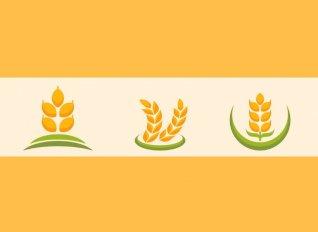 Στα σκαριά η Συνομοσπονδία Αγροτικών Συνεταιρισμών Ελλάδας