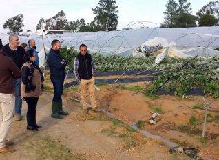 Μεγάλες καταστροφές στις ελιές και στις φράουλες της Ισπανίας από τις ισχυρές βροχοπτώσεις