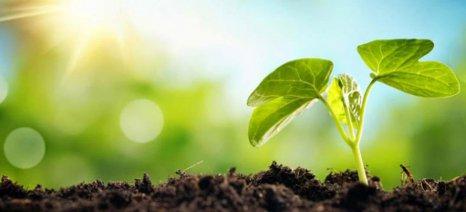 «Βιονικό» φύλλο παράγει λιπάσματα για γεωργικές καλλιέργειες