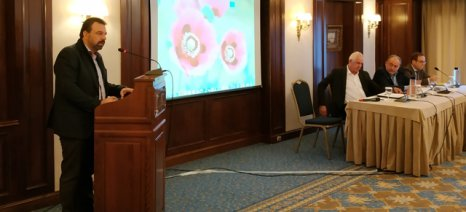 Νέα υπόσχεση από Αραχωβίτη: Με την ψήφιση του προϋπολογισμού θα καταργηθεί ο ΕΦΚ στο κρασί