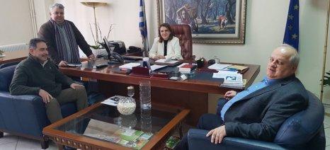 Συνάντηση Τελιγιορίδου με το Δήμαρχο Πρεσπών για το Διαχειριστικό Σχέδιο Βόσκησης του Δήμου Πρεσπών