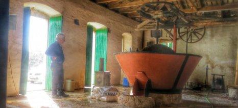 Κεφαλονιά: Νέο μουσείο λαδιού στα Διλινάτα