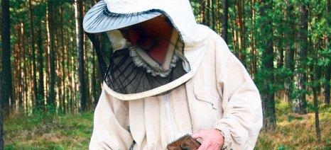 Κατερίνη: Ταχύρρυθμη εκπαίδευση μελισσοκομίας στις 27-29 Ιουνίου