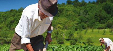 Μέχρι τέλος του έτους χειρόγραφα οι τροποιητικές φορολογικές δηλώσεις αγροτών λόγω καθυστέρησης ΟΠΕΚΕΠΕ
