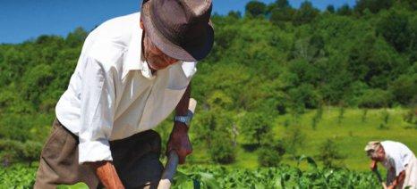Δεν περικόπτεται η σύνταξη για αγροτικά εισοδήματα που δεν υπερβαίνουν τα 4.923 ευρώ