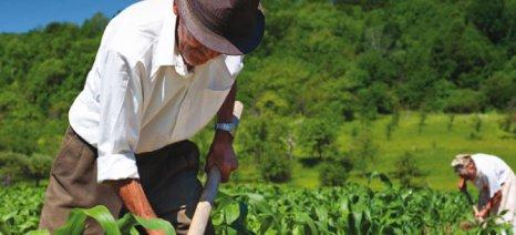 Παρατείνονται οι διαδικασίες ρύθμισης των αγροτικών ασφαλιστικών οφειλών