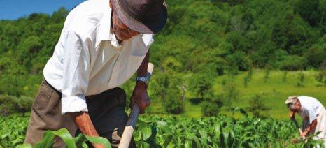 Οι πολύτεκνοι γεωργοί στο 100% της σύνταξης αν εργάζονται – οι υπόλοιποι στο 70%