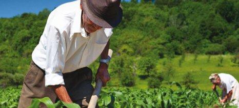 Στα χαμηλά τα ατομικά εισοδήματα 502.000 αγροτών που συνολικά αγγίζουν τα 1,3 δις ευρώ, σύμφωνα με την ΑΑΔΕ