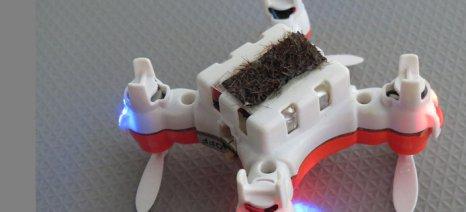 Το πρώτο drone σε ρόλο ρομπο-μέλισσας που αναλαμβάνει να επικονιάσει τα φυτά