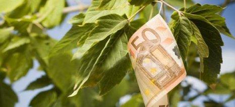 Δυσάρεστη έκπληξη για τους παραγωγούς Τρικάλων από την εξισωτική αποζημίωση