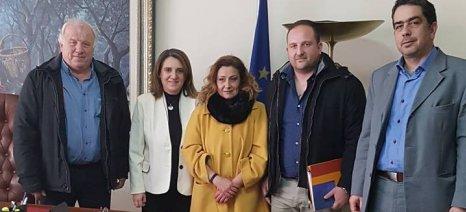 Με τους κροκοπαραγωγούς της Κοζάνης συναντήθηκε η Τελιγιορίδου