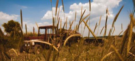 Ιδού γιατί η Ελλάδα παραμένει μια κατά βάση αγροτική χώρα, αλλά με φτωχούς αγρότες…