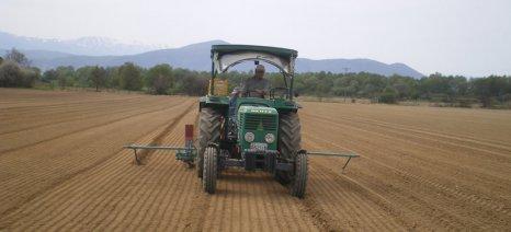 Σε 4 ερωτήματα σχετικά με την έννοια του νεοεισερχόμενου αγρότη απαντά ο Αντώνογλου