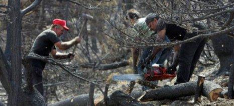 Οδηγίες αποζημιώσεων μέσω ΕΛΓΑ για τις πυρκαγιές του 2017