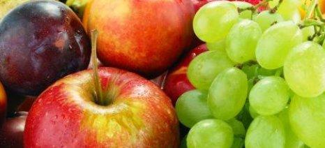 Οδηγίες για εξαγωγές φρούτων στην Ινδονησία