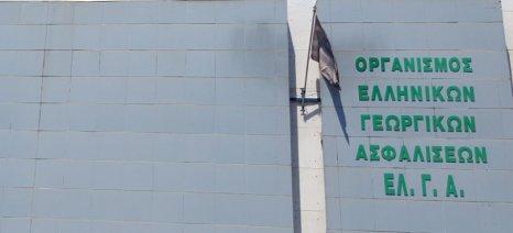 Σύσκεψη σήμερα το πρωί στον ΕΛΓΑ για τις ζημιές από το χαλάζι σε όλη την Ελλάδα