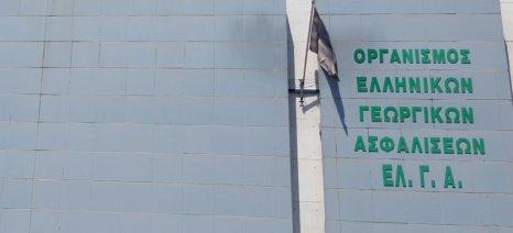 Αύριο πληρώνει ο ΕΛΓΑ 30 εκατ. ευρώ σε αποζημιώσεις