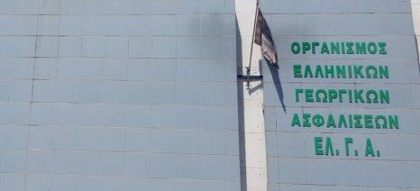 Μέχρι 9 Αυγούστου αιτήσεις πρόσληψης για 45 συμβασιούχους στον ΕΛΓΑ