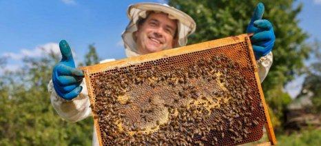 Πληρώθηκαν προγράμματα για μέλι, φρούτα, δασώσεις και προώθηση