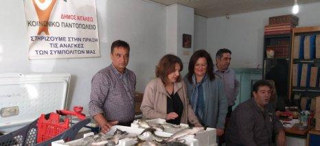Δωρεάν διάθεση ψαριών σε κοινωνικά παντοπωλεία από υδατοκαλλιεργητές