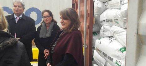 Τελιγιορίδου: Ο ποιοτικός έλεγχος των εισαγόμενων τροφίμων αποτελεί για το ΥΠΑΑΤ πρώτη προτεραιότητα
