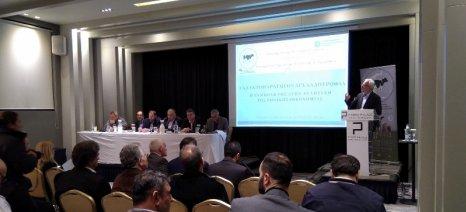 Το ελληνικό αγελαδινό γάλα μπορεί να γίνει ανταγωνιστικό με άλλο τρόπο και όχι τη μείωση του κόστους