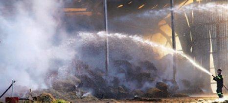 Ζημιές χιλιάδων ευρώ από πυρκαγιά στην αγελαδοτροφική μονάδα της ιδιοκτήτριας οικογένειας της Εβροφάρμα