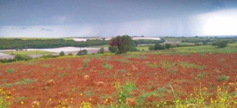 Καταστροφικό χαλάζι έπεσε την Παρασκευή σε καλλιέργειες στη Ροδόπη