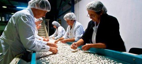 Έως 70% επιδοτήσεις επενδύσεων στον αγροδιατροφικό κλάδο της Ανατολικής Μακεδονίας και Θράκης